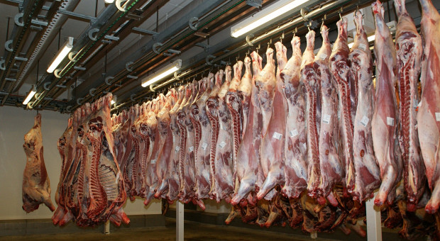 KE: Większy eksport mięsa z UE