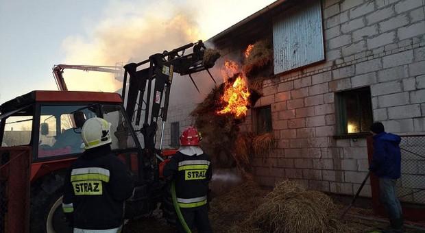 Pożar budynku inwentarskiego  pod Złotowem