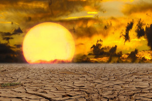 Na pomoc po tegorocznej suszy zabrakło jednej trzeciej środków