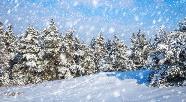 Ostrzeżenia IMGW przed oblodzeniem i opadami śniegu