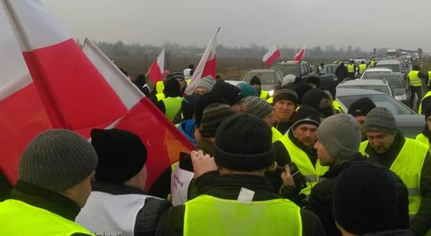 Ardanowski: Od trzech miesięcy w Polsce nie ma ASF u świń