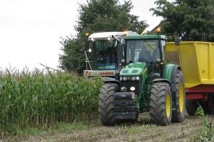 PDO 2018: Plon i zawartość suchej masy kukurydzy kiszonkowej – wczesnej