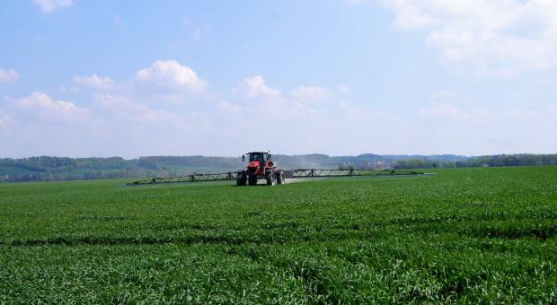 Im mniejsze gospodarstwo, tym mniejsza chemizacja upraw