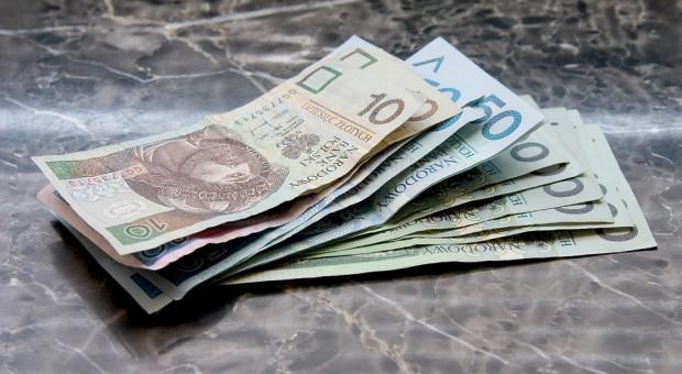 Zaliczki dopłat były w tym roku znów zamiast samych dopłat?