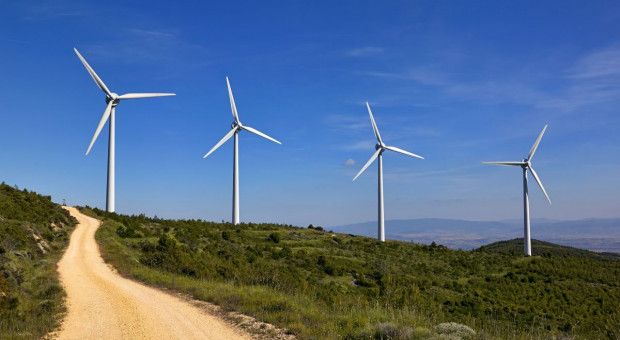 Po aukcji OZE na rynku farm wiatrowych pojawią się nowi inwestorzy