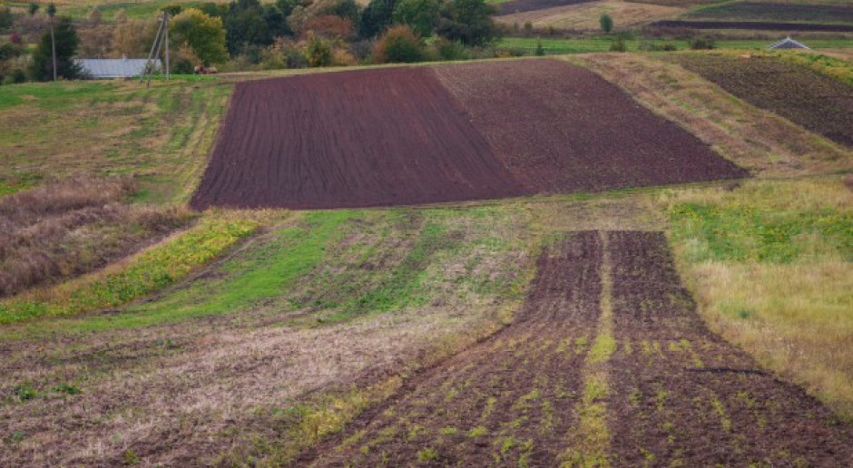 Ukraina: Przedłużono moratorium na sprzedaż gruntów ornych