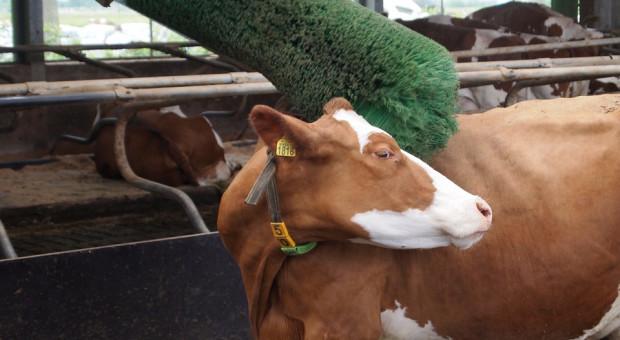 """Są istotne zmiany w """"Modernizacji gospodarstw rolnych"""""""