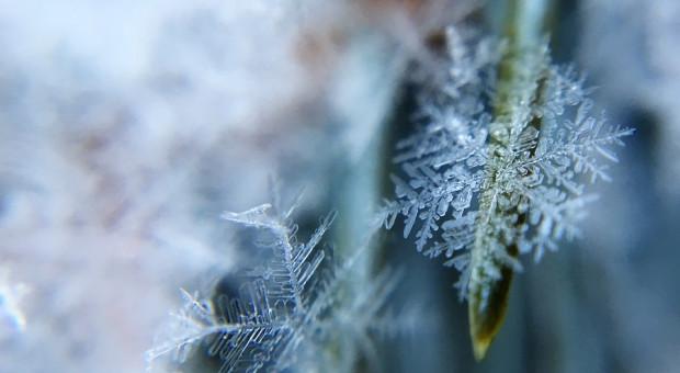 Prognoza pogody na 10 i 11 stycznia