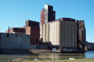 USDA: Małe wzrosty prognozy światowej produkcji pszenicy i zbóż paszowych