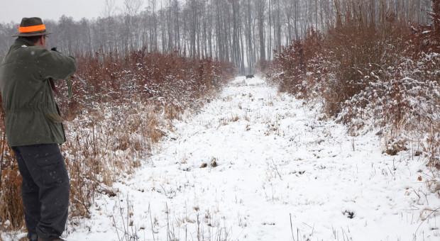Luki w bioasekuracji - nie tylko w gospodarstwach ale też w trakcie polowań