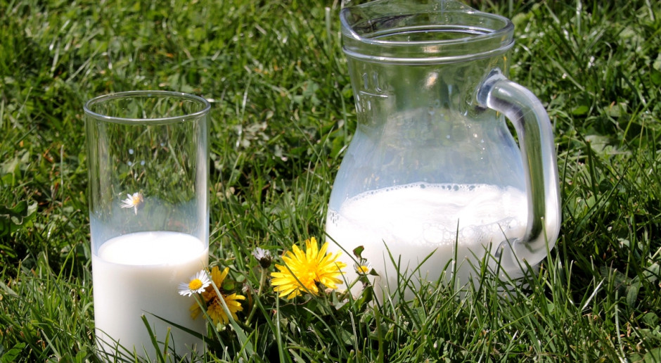 Pozytywne prognozy dla rynku mleka