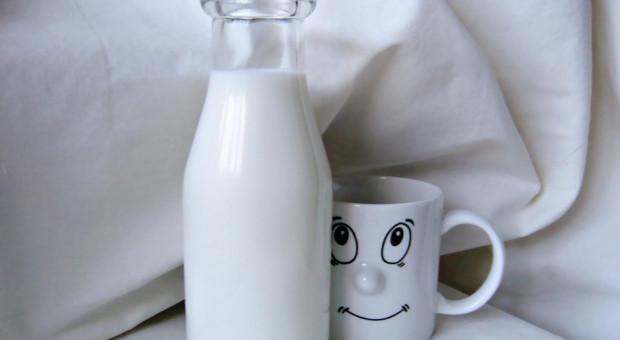 Niemcy: Giełda EEX rekordowy poziom kontraktów na odtłuszczone mleko w proszku