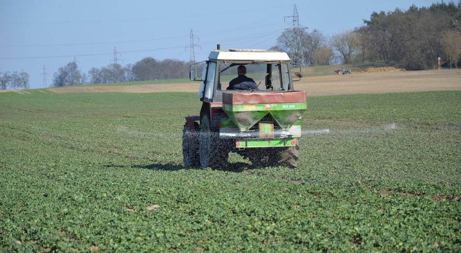 Wiosenne nawożenie rzepaku azotem