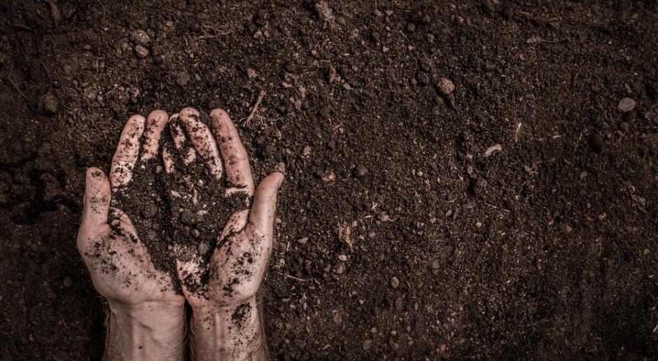 Żyzność gleby powinna być priorytetem
