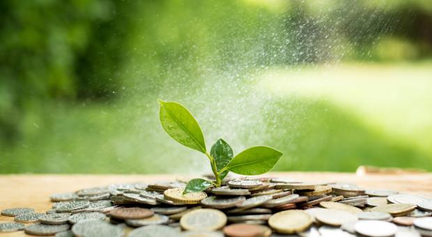 Wydatki na rolnictwo w 2019 r. będą realnie niższe o 4,91 proc. niż w 2018 r.