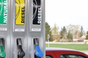 UE: Wykorzystanie rzepaku do produkcji biodiesla coraz trudniejsze
