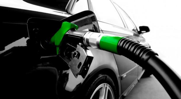 Copa-Cogeca zaniepokojone kwotą importową biopaliw z Argentyny