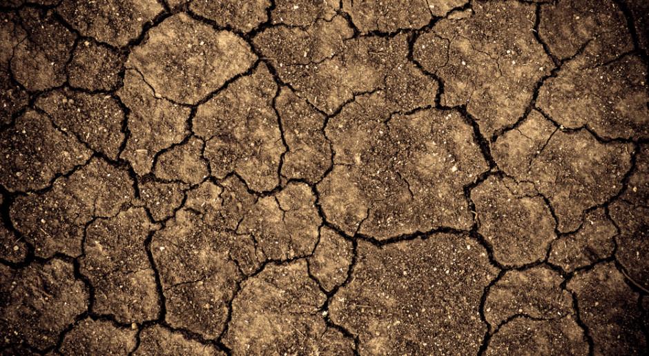 Dlaczego gleba ma kwaśny odczyn?