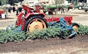 RS 09 (rocznik 1958) z pielnikiem P320 produkcji Landmaschinenbau Torgau do ziemniaków (4 rzędy) i innych roślin okopowych (6 rzędów buraków), fot. materiały prasowe
