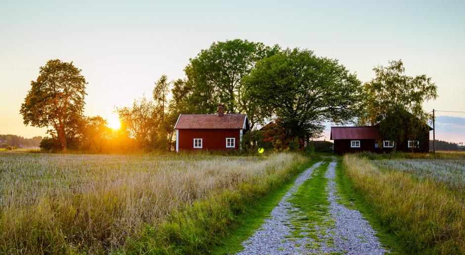 Od 2010 roku ubyło w Polsce prawie 7 proc. gospodarstw rolnych