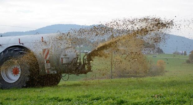 Aplikacja gnojówki i gnojowicy a program azotanowy