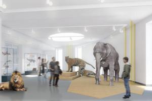 Na wystawie w Muzeum Przyrodniczym UŁ 1,5 tys. gatunków zwierząt