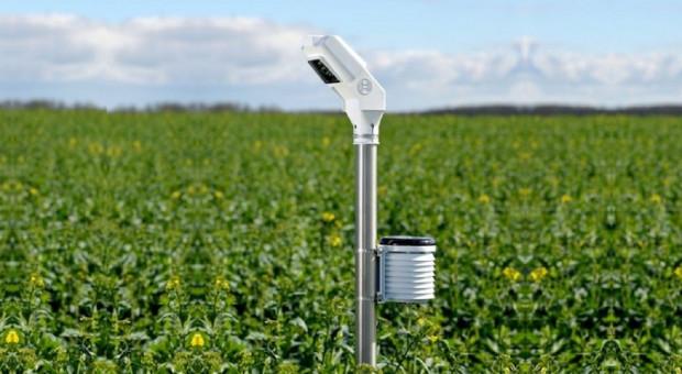 Palik Bosch Field sensor monitoruje na bieżąco stan pola