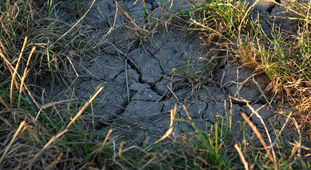 Susza według nowych wartości klimatycznego bilansu wodnego