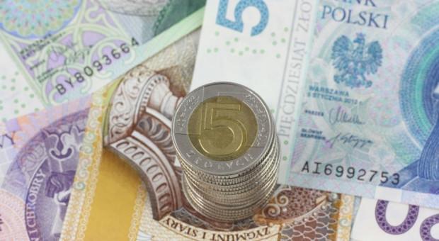 Sejm za dalszym procedowaniem projektu wprowadzającego instrumenty finansowe w PROW