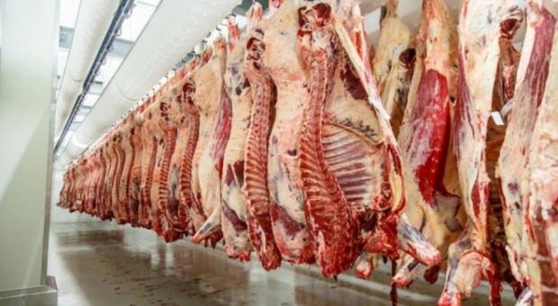 GLW: Czechy nie poinformowały o wykryciu salmonelli w mięsie