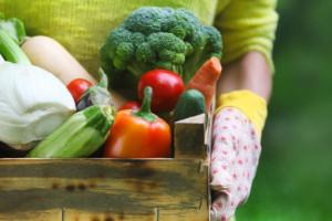 Francja: Mniej konsumentów żywności ekologicznej