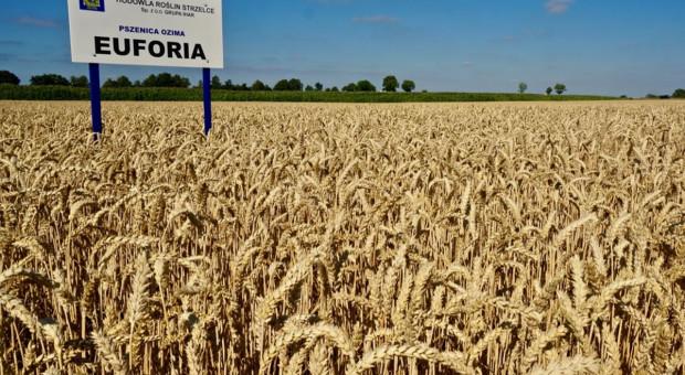 Euforia nagrodzona podczas Agro-Park w Lublinie