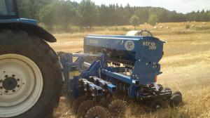 Siewnik STP 300 może pracować także na ścierniskach - zarówno przy siewie poplonów jak i nasion roślin uprawnych.
