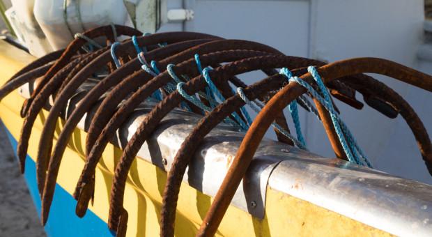 """Chudy rok rybaków. """"Przyczyna to wejście dużych jednostek na Bałtyk"""""""