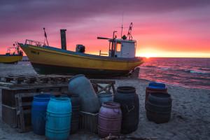 ARiMR wyjaśnia ewentualne nieprawidłowości w sektorze rybnym
