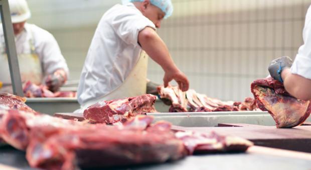 Na przełomie marca i kwietnia będzie audyt ws. mięsa w Polsce