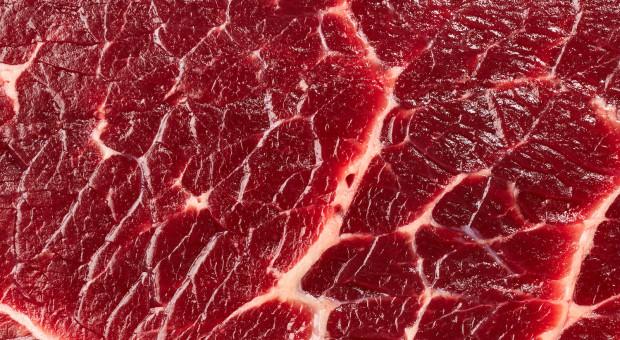 """We wtorek w ramach """"Porozumienia Rolniczego"""" rusza zespół ds. wołowiny"""