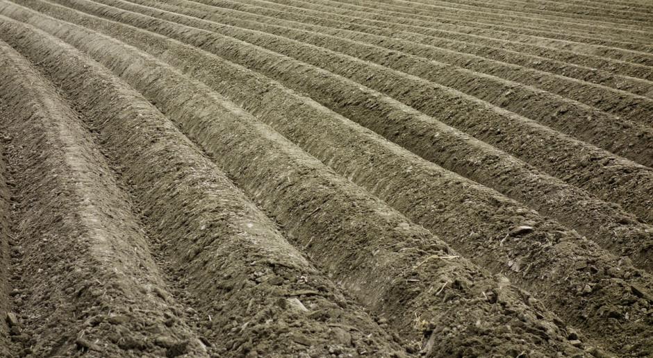 Ukraina nadal bez wolnego handlu gruntami rolnymi