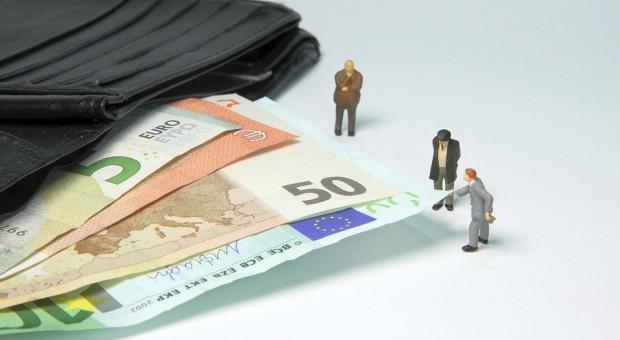 1500 euro za dwuletni program doradczy z PROW