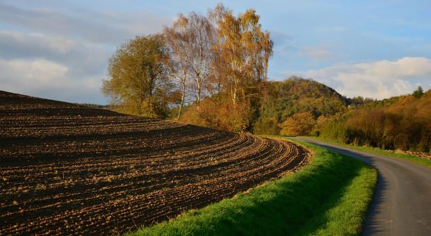 FAO: Najwięcej gruntów ornych na mieszkańca ma Rosja