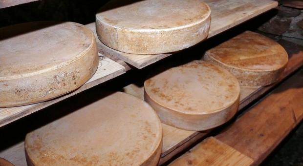 USA: Rekordowe ilości sera w chłodniach