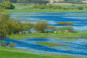 PO chce specjalnego programu dla Biebrzańskiego Parku Narodowego