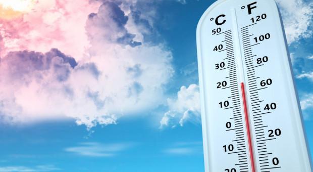Temperatura minimalna - zwróć na nią uwagę podczas zabiegów ochrony roślin