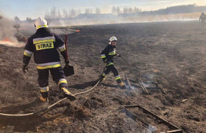 Strażacy przez kilka godzin walczyli z żywiołem