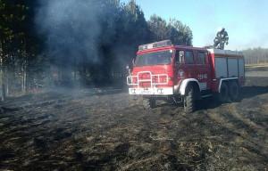 Do akcji skierowano strażaków z pięciu jednostek
