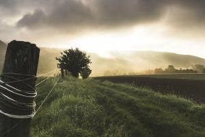 Ustawa o kształtowaniu ustroju rolnego w przyspieszonym tempie?