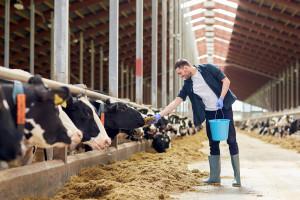 """ARiMR: ruszył nabór wniosków na """"Modernizację gospodarstw rolnych"""""""
