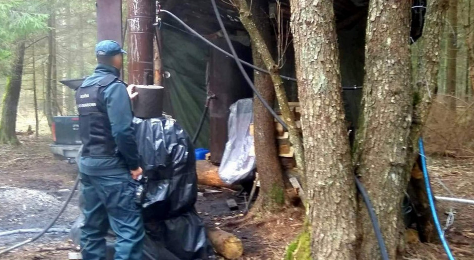 KAS zlikwidowała leśną bimbrownię - jedna osoba zatrzymana