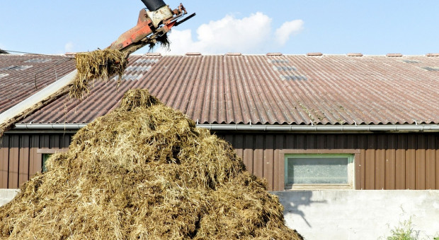 Które gospodarstwa w pierwszej kolejności będą kontrolowane pod kątem programu azotanowego i jakie przewiduje się kary?