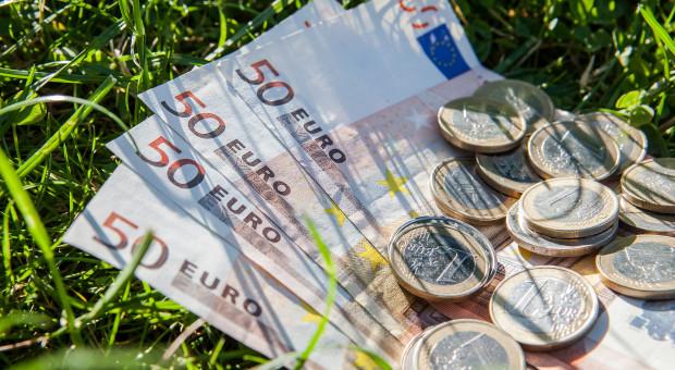 Produkcja rolna w 2019 r. w UE wzrosła o 2,4 proc.